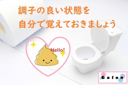 トイレのミニチュアとトイレットペーパー