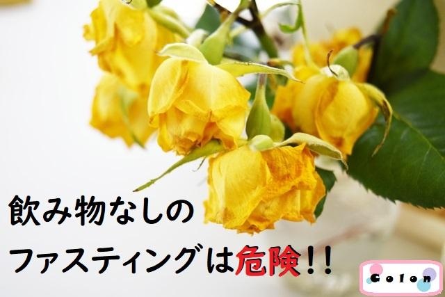 枯れた黄色いバラ